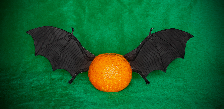 Bat Lencia